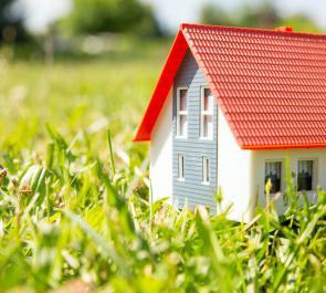 Владельцам дачных участков разрешат оформить в собственность самовольно захваченную землю